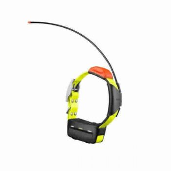Garmin T5 Dog Tracking Collar